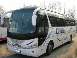 Autobuz Obadă Trans